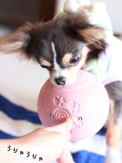 まりちゃん ピンクのボール