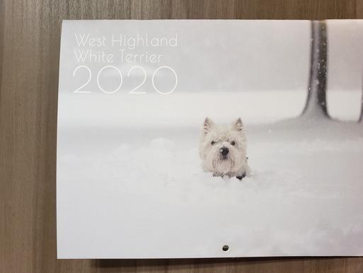 【ウエスティ】今年のカレンダー