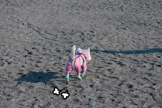 朝イチ出発な旅散歩 その①