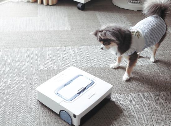 床拭きロボットとご対面