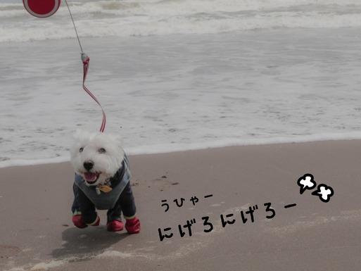【九十九里の旅】九十九里の海岸