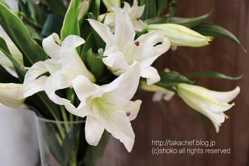 【ブランカを偲ぶ】毎年届くカサブランカ。と花瓶と、思い出の写真