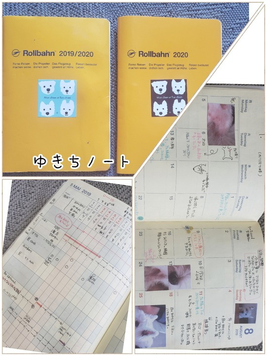 20-09-30-10-53-37-442_deco