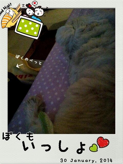 ●一緒に寝たんだ