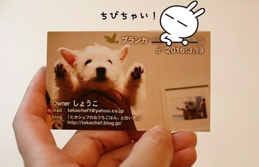 [画像:f5b5388f-s.jpg]