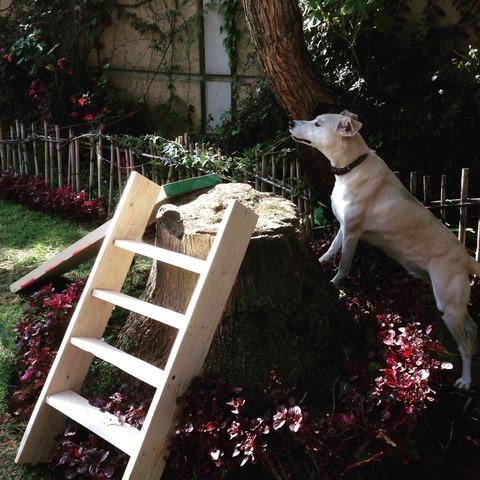 階段を作り配置検討
