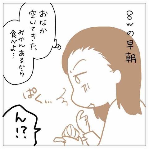 IMG_7951