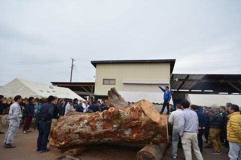 s-南東北材木市場 写真