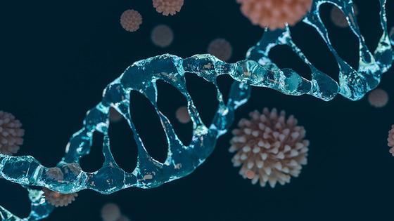 Coronavirus-DNA-Science