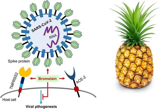 bromelain-sars-pineapple
