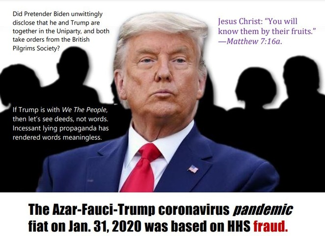 trump-fraud