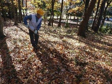 9古道の森 落ち葉はき