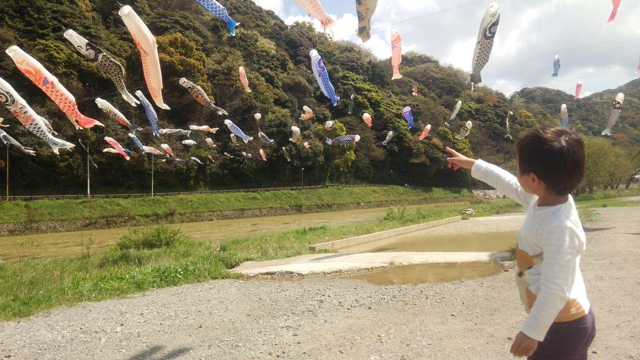 桜橋の鯉と佑蔵