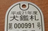 CIMG1484