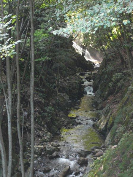 武石キャンプ04