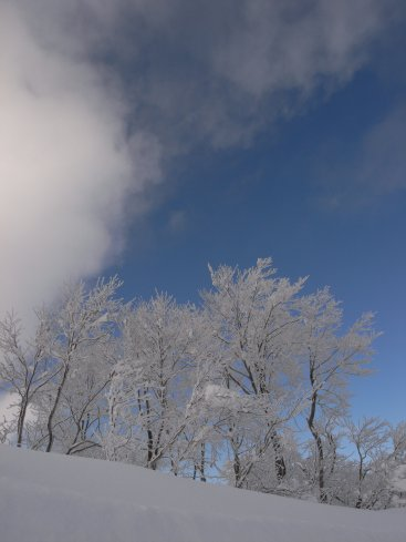 野沢温泉山頂