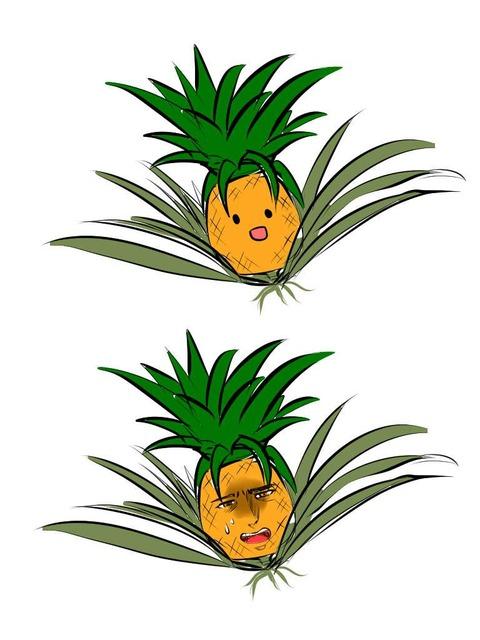 キャラクターデザインパイナップル