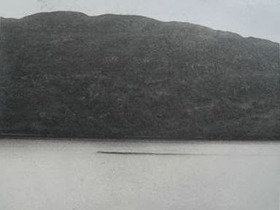 Possible Loch Ness Photo 1938 from eBay zoomed