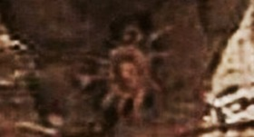 119cb038.jpg