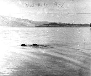 Loch-Ness-Monster-March-1973-sighting