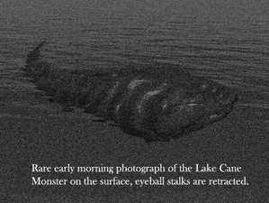 lake_cane_monster_photo