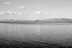 lakewater_bw