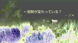 Effectplus_20160519_191827