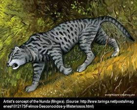 Mngwa-Image