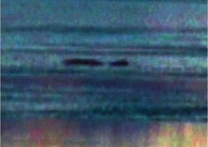 Screenshot_2016-03-27-06-14-58