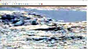 Screenshot_2016-02-12-20-42-11
