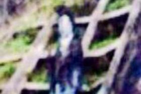 b7aa03cf.jpg
