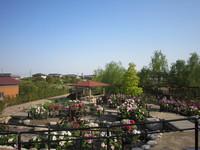 長島水辺のやすらぎパーク3
