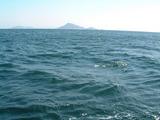 黒メバル釣り3