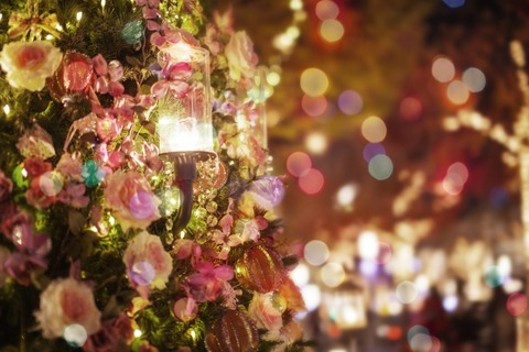 クリスマスイルミacworks_s