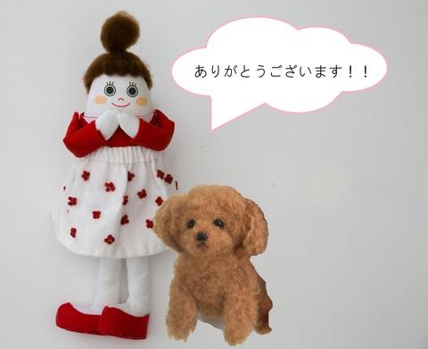 コミパお礼jpg