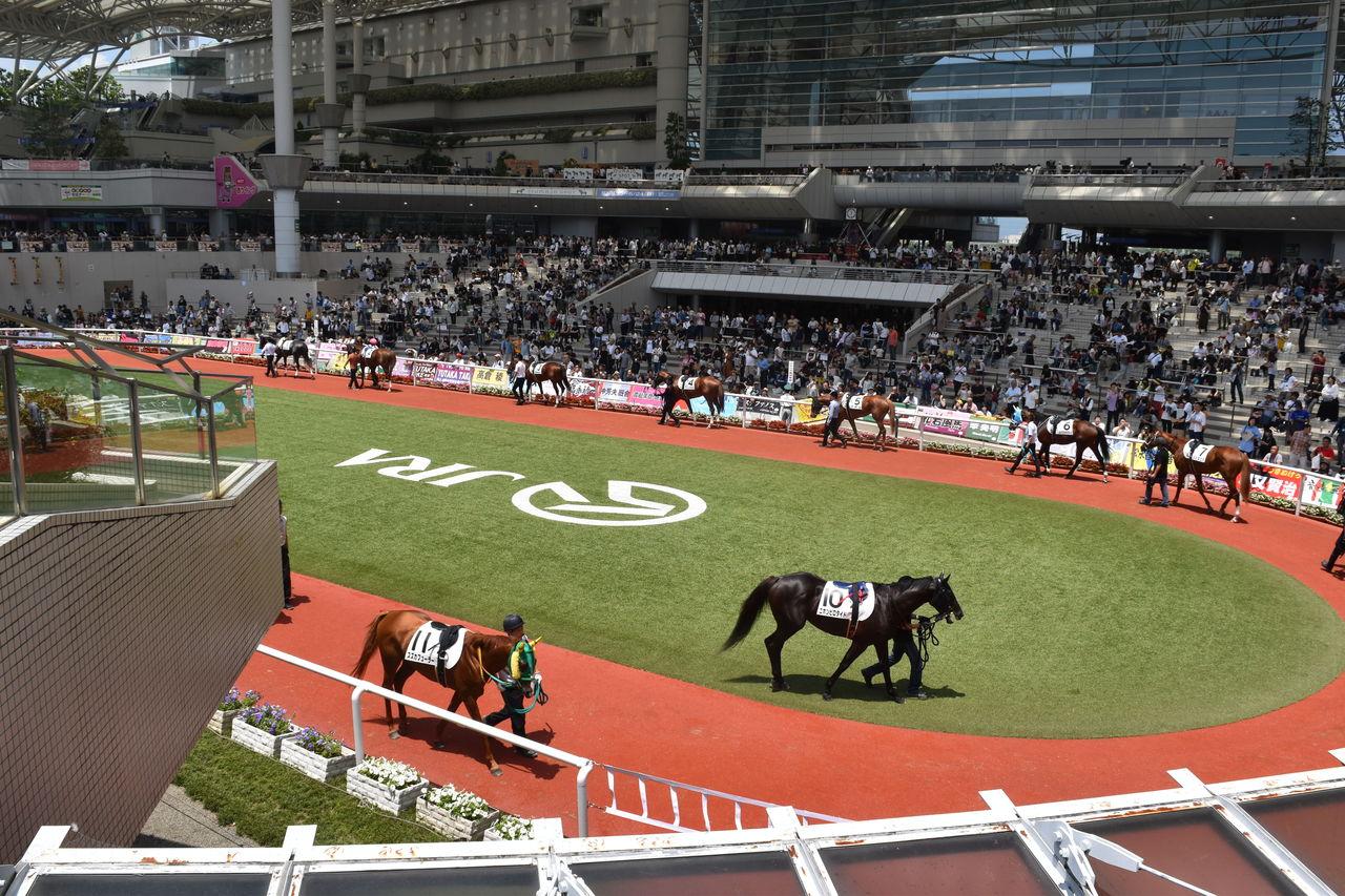 阪神 競馬 場 グルメ