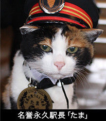 たま名誉駅長
