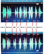 音声波形比較