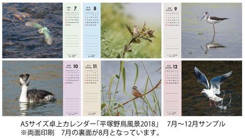 平塚野鳥風景B