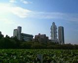 不思議なビル・ソフィテル東京を望む