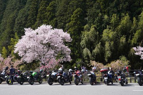 名倉桜とバイク2