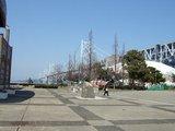 大橋記念公園2