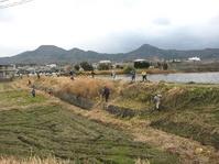 池の草刈り