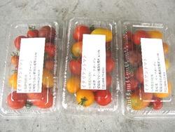 七色トマト