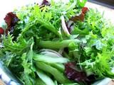 葉物サラダ