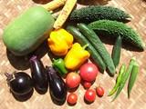 収穫の種類