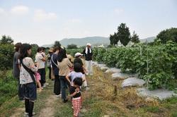 松本農園見学