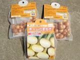 ホーム玉葱の種