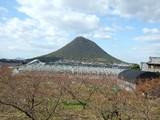 初冬の飯野山