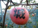 リンゴの文字